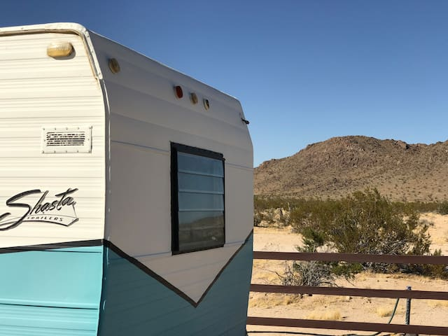 CHIQUITA ON FLAMINGO in Joshua Tree