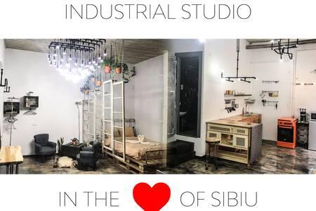 Filarmonia Industrial Studio in the Heart of Sibiu