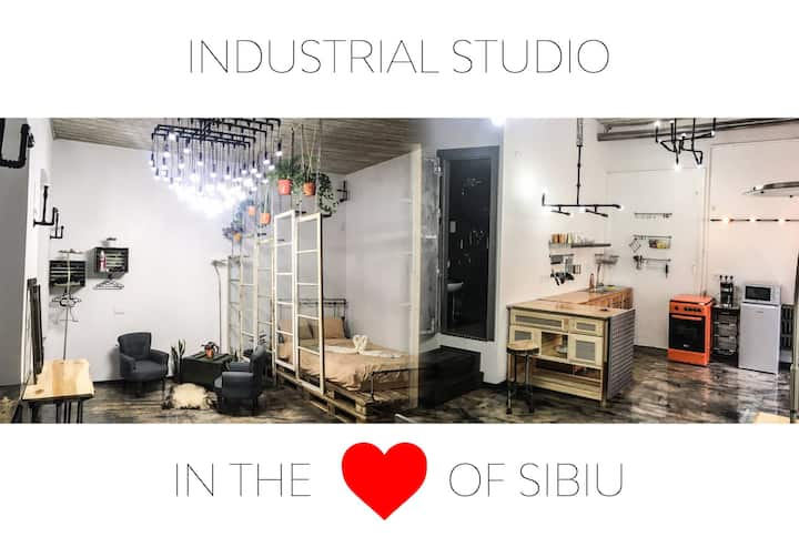 Filarmonia Industrial Studio in the Heart of Sibiu