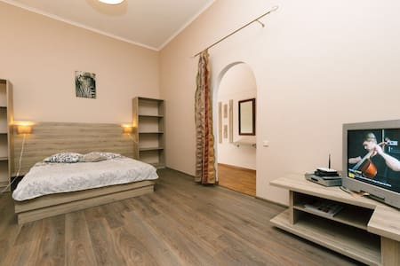 Arena, center, 1 bedroom, Basseinay - Київ