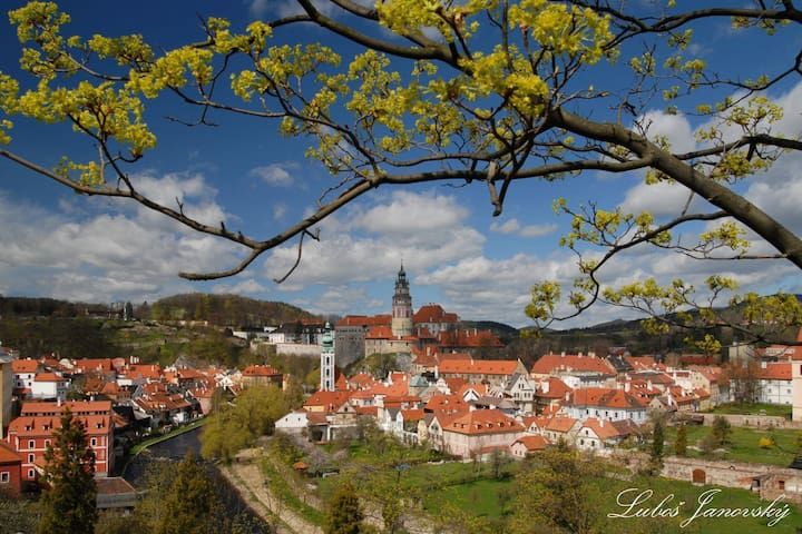 This is Cesky Krumlov :) Credits to my brother who took this picture