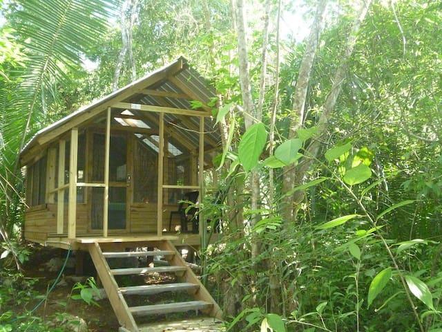Moonracer Farm:  Cohune Camping Casita Room 4 - Santa Elena