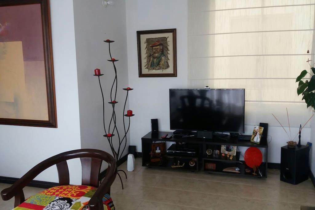 zona de televisión