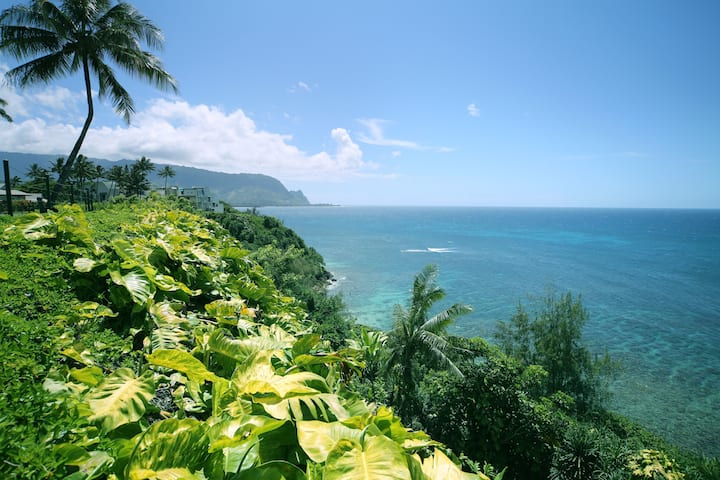 NEW! Hanalei Hideaway North Shore condo