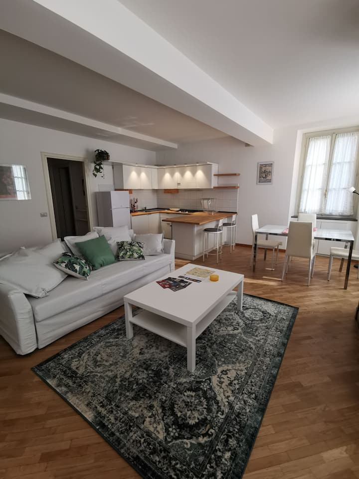 Spacious two-room apartment in the city center