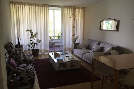 Apartment,fully equipped,parking,wifi, Vitacura - Vitacura