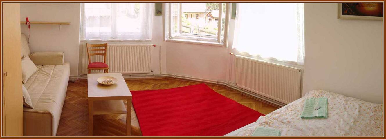 Levně přespat, Just spend the night - Tábor - Apartamento
