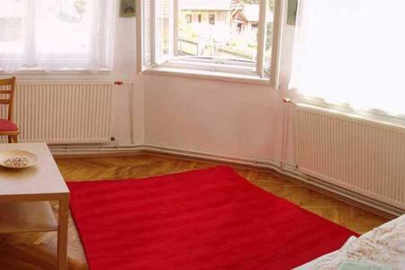 Levně přespat, Just spend the night - Tábor - Apartment