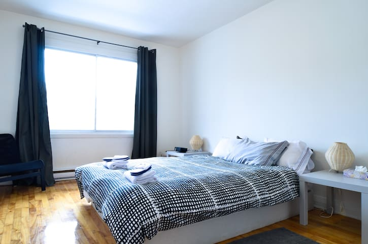 Spacious 1 Bedroom Flat C Tes Des Neiges Quarter Apartments For Rent In Montr Al Qu Bec Canada