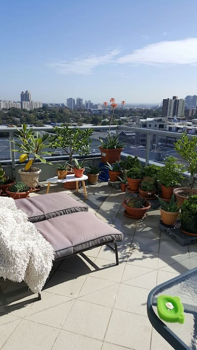View Of Sydney City Apartments For Rent In Waterloo New South Wales Australia