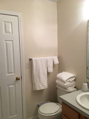 Full bath, shower/tub combo