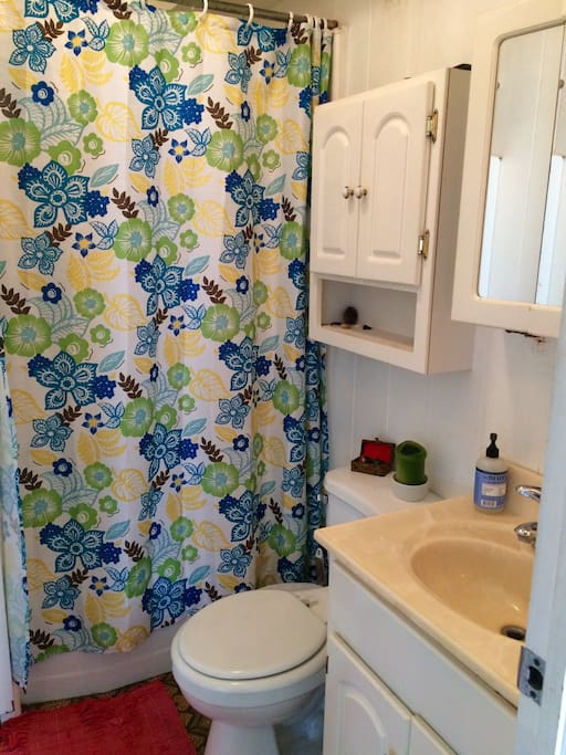 Full size shower. Towel, shampoo, and blow dryer available. Space available for you to put your toiletries.