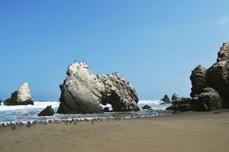 Pase unos días en una playa salvaje y natural!
