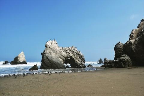 Проведите несколько дней на диком и естественном пляже!