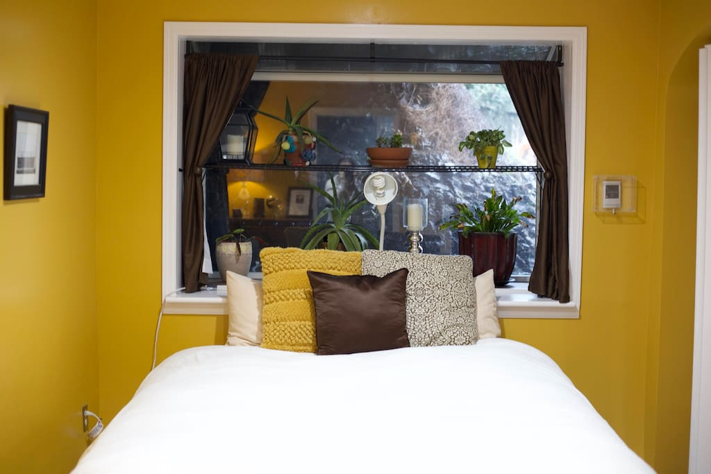 Bay window behind bed with healthy plants
