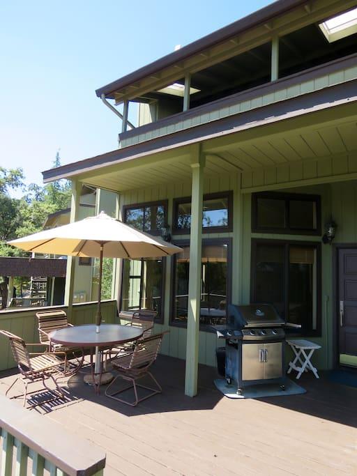 Main patio area including barbecue