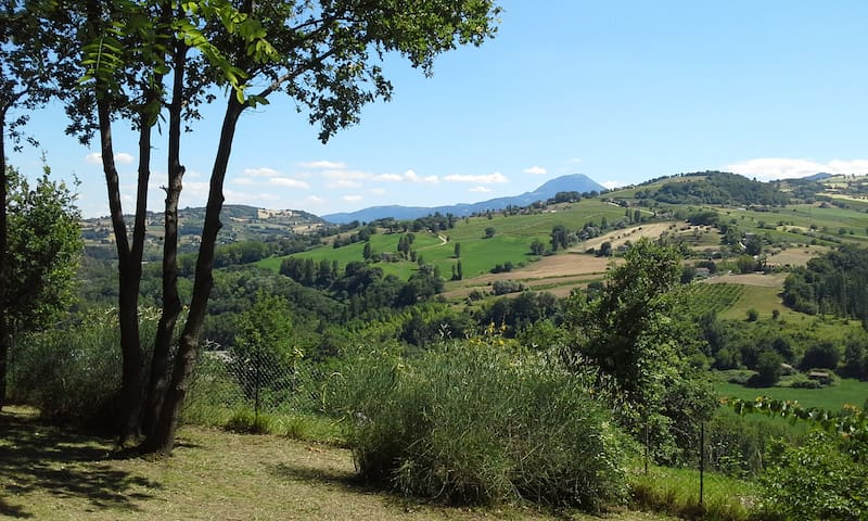 Apartment in Italian countryside - Cupramontana - Wohnung