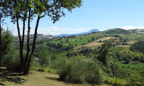 Apartment in Italian countryside: Oliva