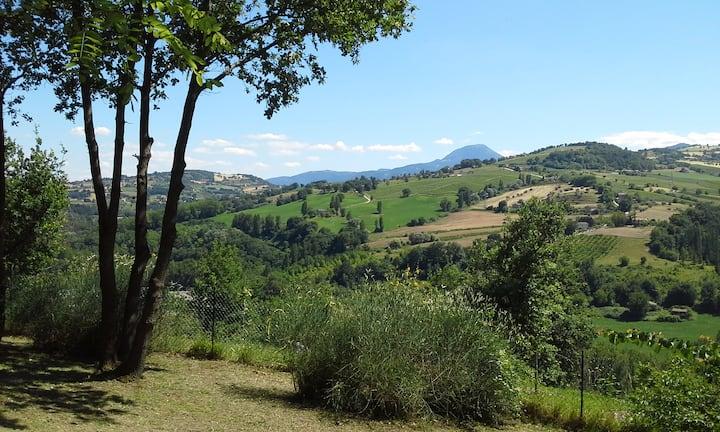 Apartment in Italian countryside (Oliva)