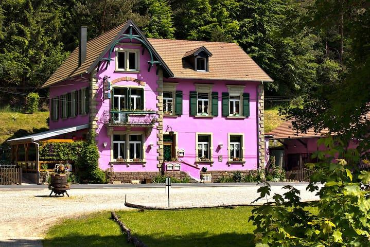 Chambre dans la nature - Garrebourg - Talo
