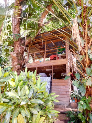 Dusty Farms, Blue Mountains, Jamaica - Maryland District - Bed & Breakfast