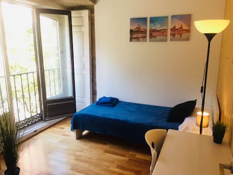 Exclusive Room, Excellent Environment - Madrid