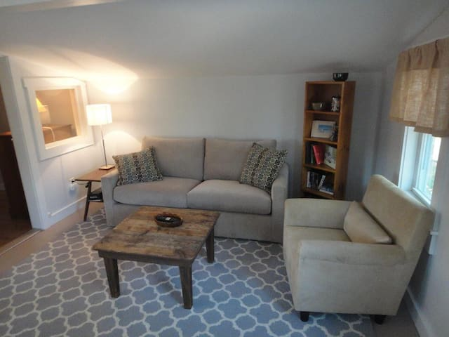 Living room, with Queen size pull-out sofa.