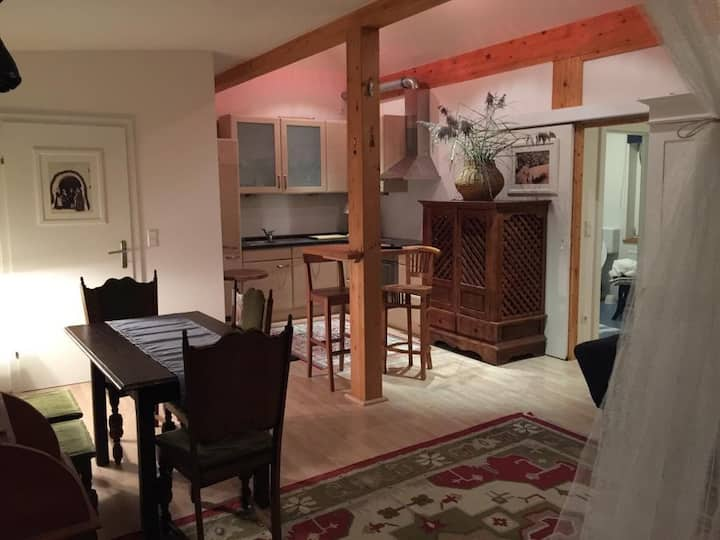 4pers Apartm. skiing hiking Schladming Dachstein