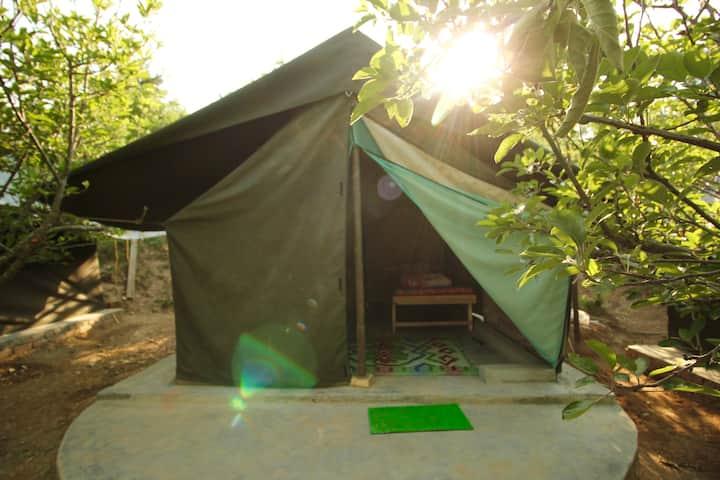 EcoPath Camp