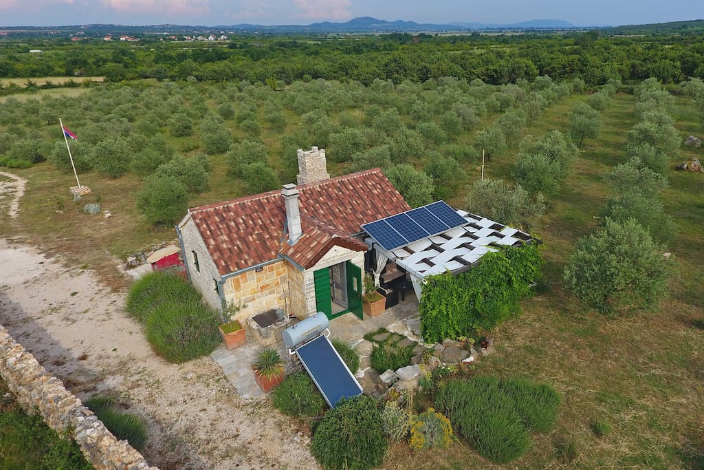 Olive Garden Paljka Houses For Rent In Donje Ra Tane Zadarska Upanija Croatia