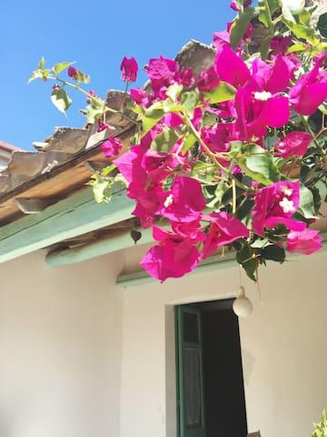 Casa en el interior de Cerdeña,  paisajes - Collinas - House