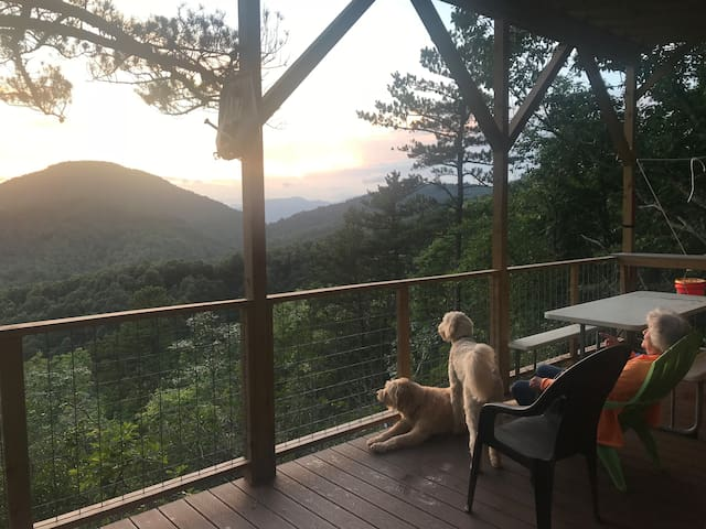 Glamping in the trees, Asheville, Dog designed!