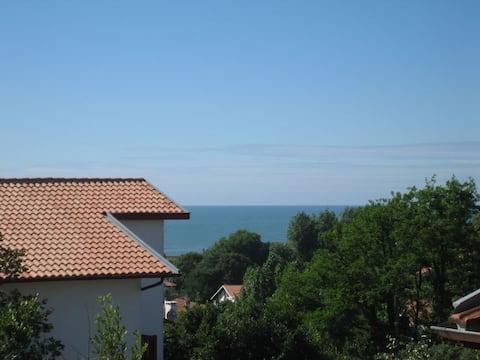Bel appt terrasse vue mer, plage à pied