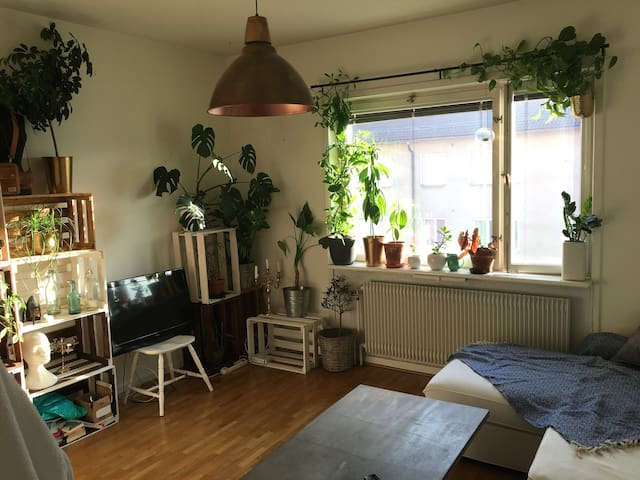 Spacious 1 room flat 10 min walk from Söder
