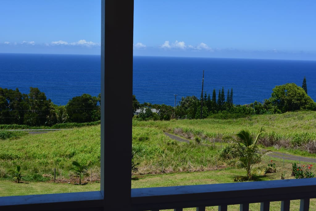 Blue Pacific from the Lanai...