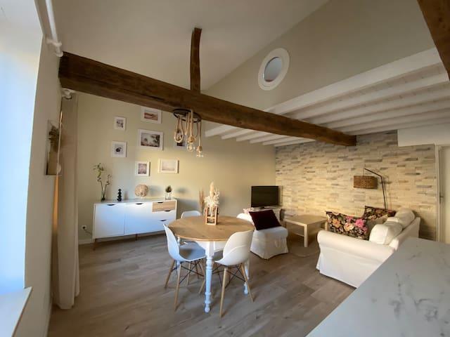 Charmant appartement centre ville de Castres
