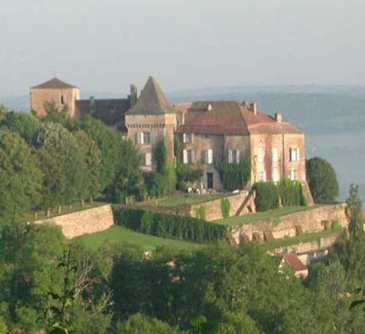 Château du XIII iéme siécle en exclusivité