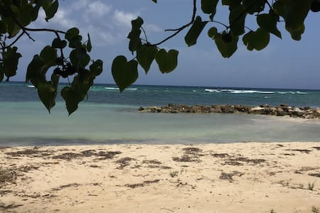 On the Beach, Off the Grid - Montego Bay