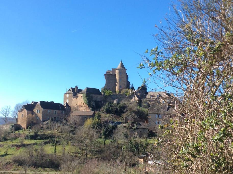 Ensemble du hameau:la maison est en haut,à droite du château