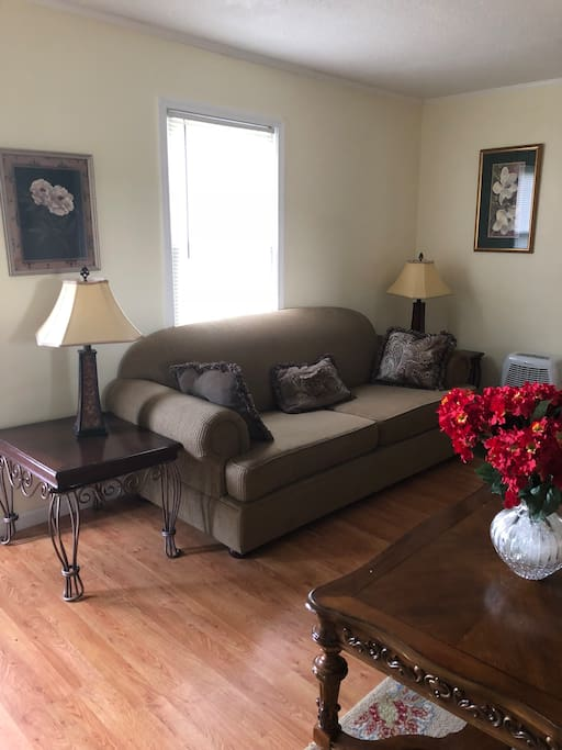 Living room sofa-sleeper