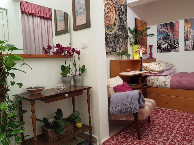 Camera singola (2 posti letto -letto a scomparsa)