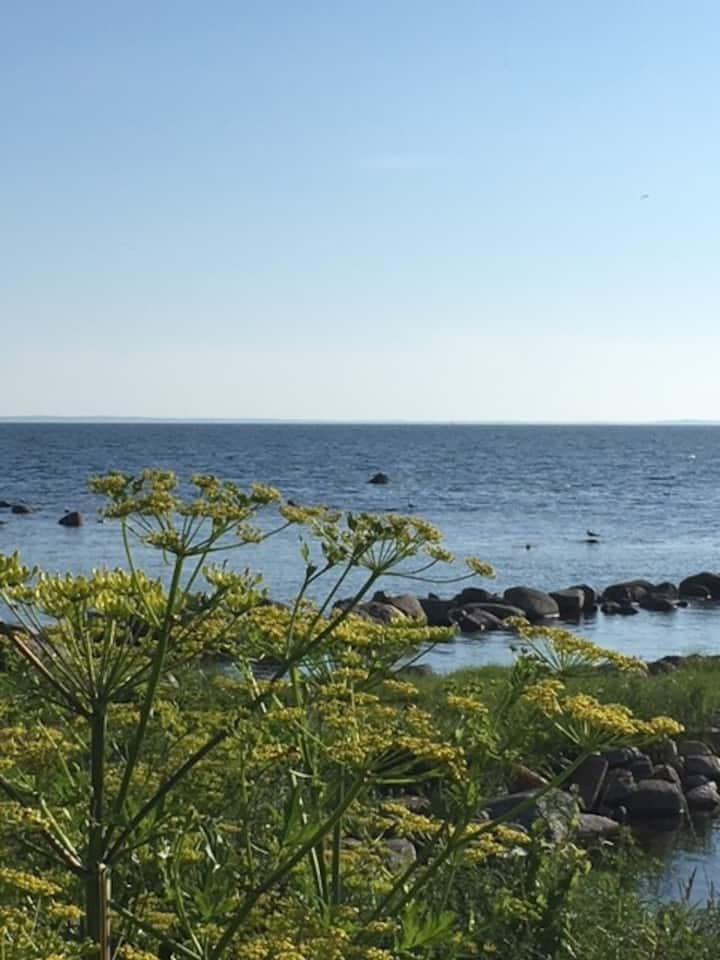 Sommarhus i härliga Hörvik