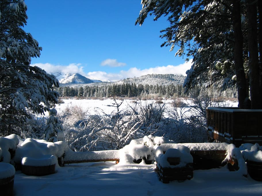Winter-time from the back patio
