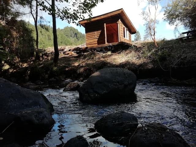 Tiny Cabin Entre Pampa y Bosque, Coihue