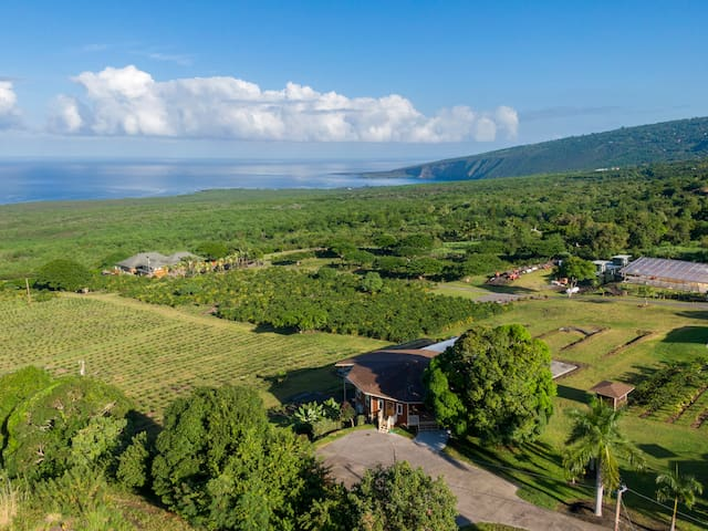 9bd/8.5ba Ocean View Living on Coffee Farm w/ Private Pool + Spa