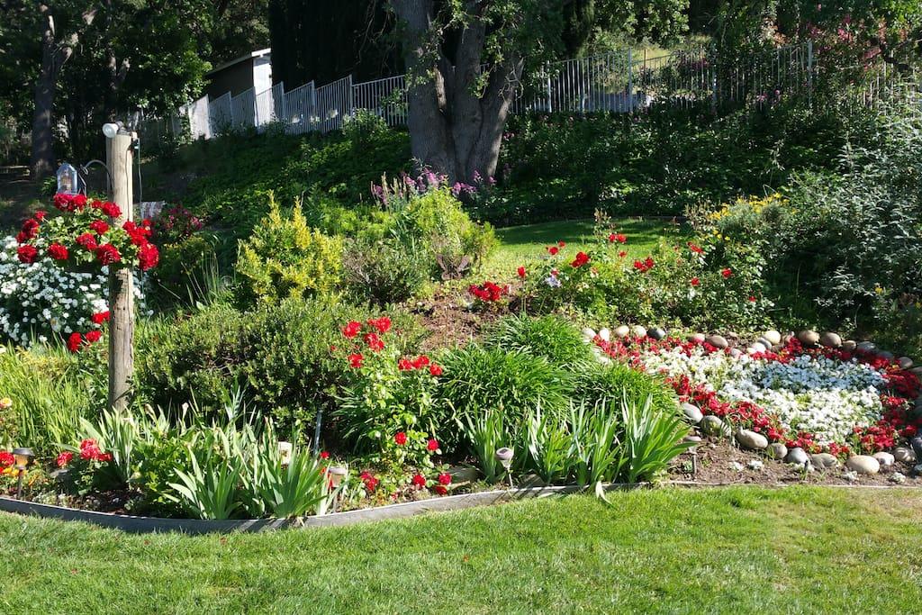 The backyard has beautiful gardens...