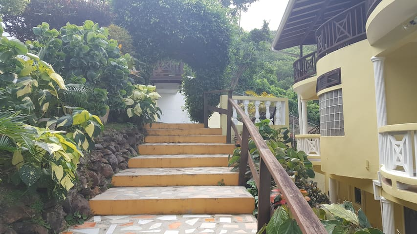 Garden Stairs to parking area