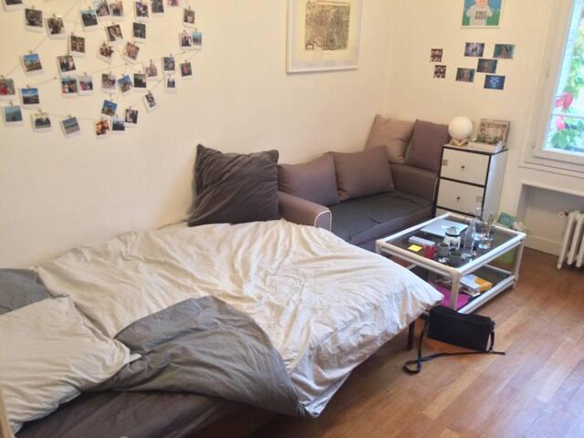 Private Room in Cozy Parisian Apartment