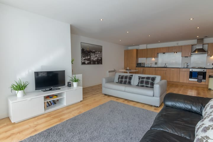 Fabulous 1 Bed Apt (sleeps 4), next to SSE Hydro