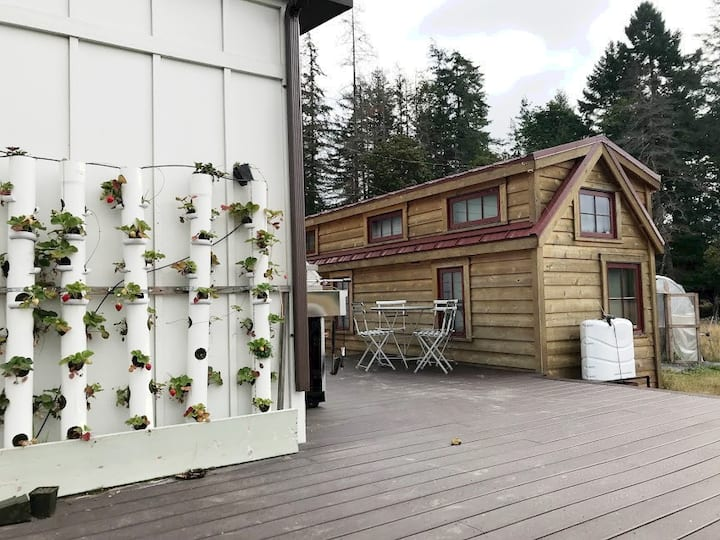 Organic Farm Stay Hot Breakfast in New Tiny Home